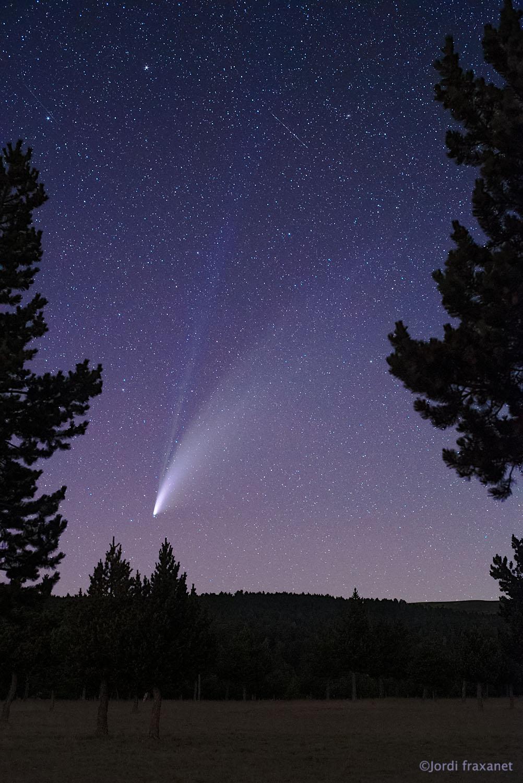 Cometa C/2020 F3 NEOWISE gran campo enmarcado el 18/07/20