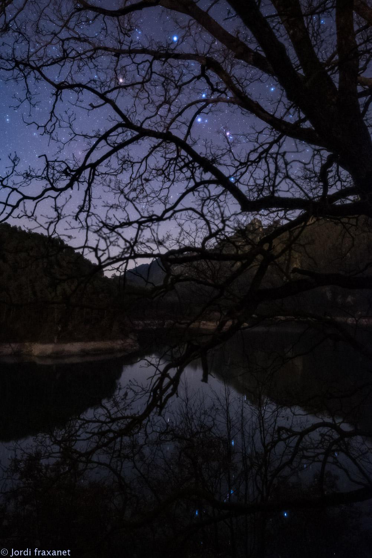 Constelación de Orión reflejada en el agua tras un arbol en Llosa del Cavall el 06/01/21